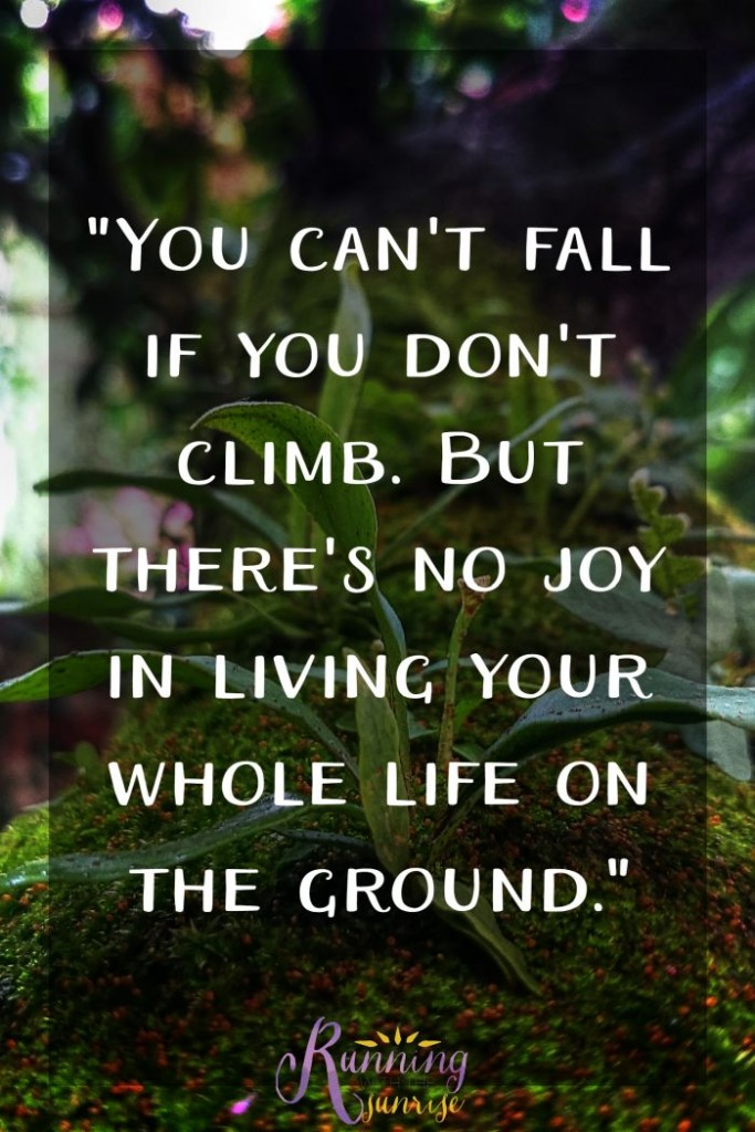 """Motivational and inspirational quote: """"You can't fall if you don't climb, but there's no joy living your whole life on the ground."""" -Anonymous"""