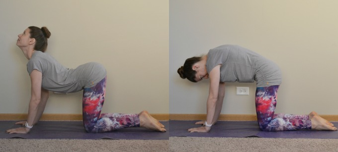 Yoga poses for the shoulders and neck: Cat and Cow Flow